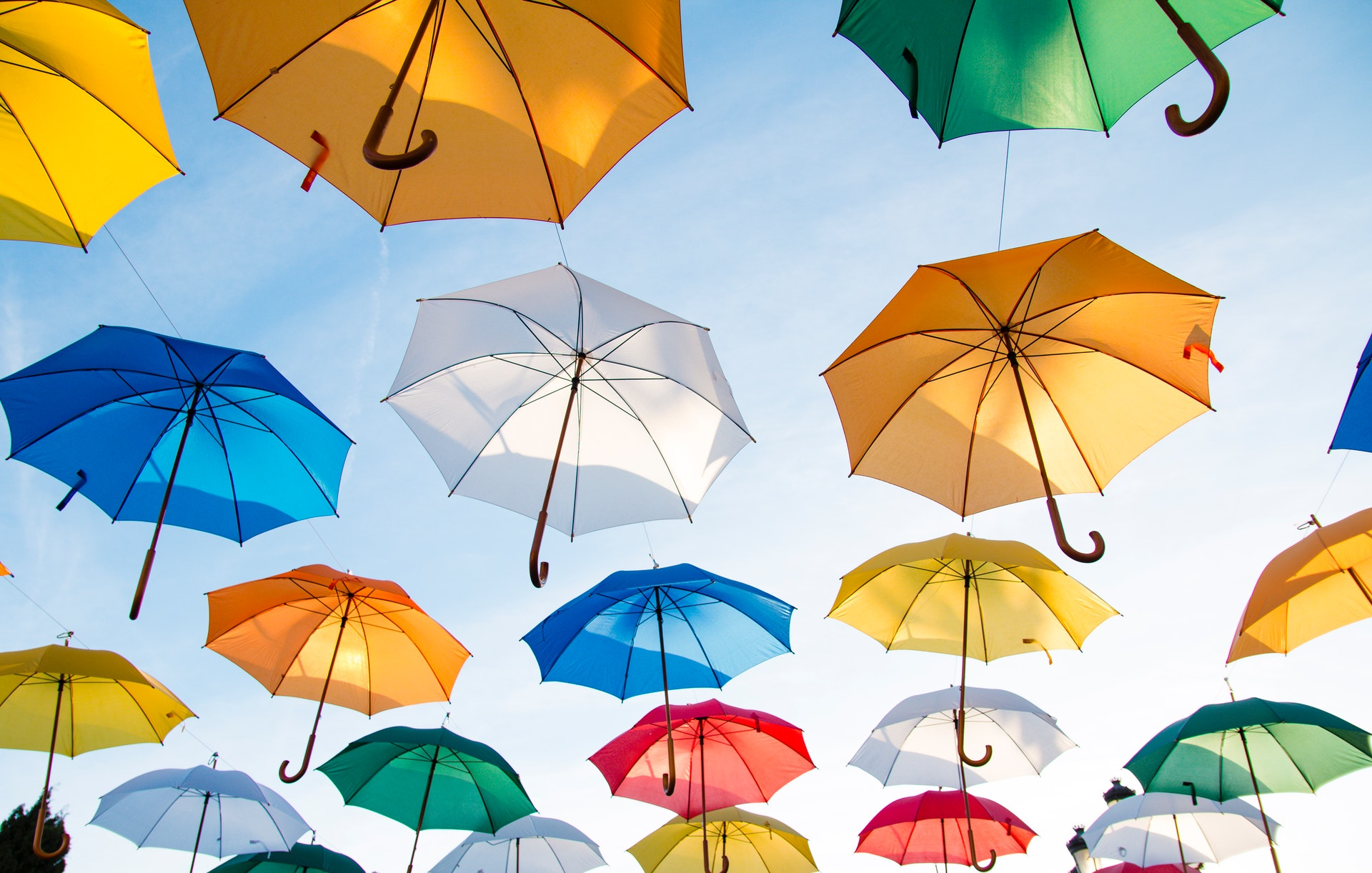 coya insurances overview